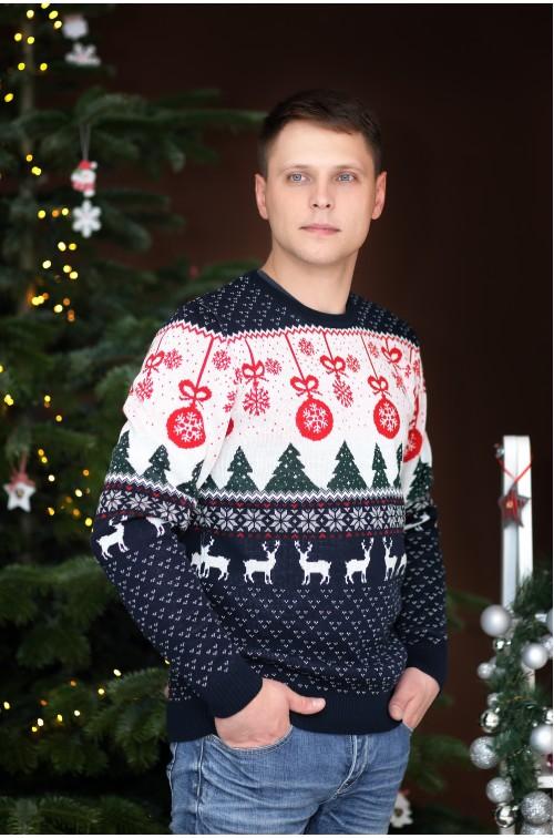 Vyriškas megztinis R-848
